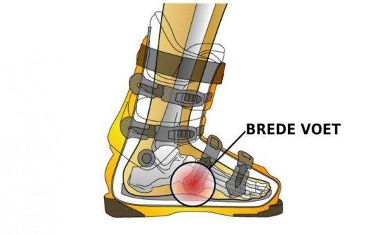 Brede_voet